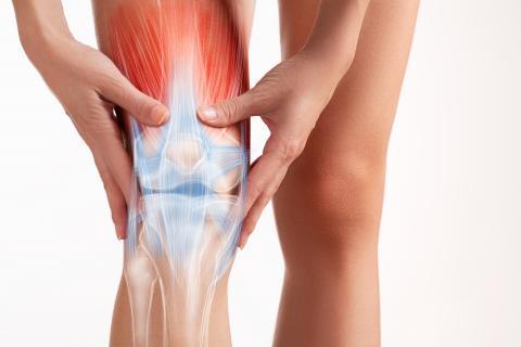 dolor parte externa del muslo